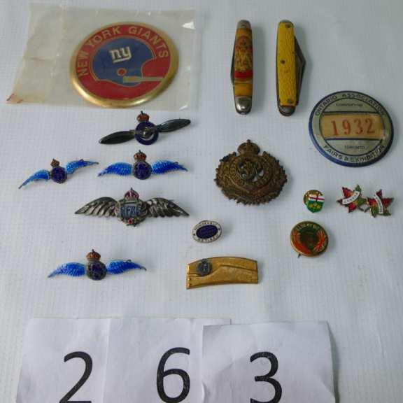 Assortment of Pins